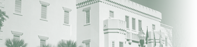 Charleston District Header Image